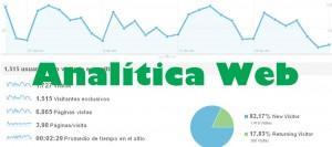 Fases Analitica Web
